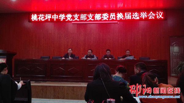 隆回县桃花坪中学党支部举行支部委员换届选举会议